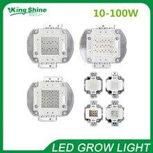 Горячая 10 Вт 20 Вт 30 Вт 50 Вт 100 Вт интегрированный cob светодиодный светильник для выращивания чип красный 660nm, синий 450-460nm Epileds Чип, 2 года гарантии