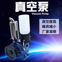 250L High Quality Fiber Rotary Blade Vacuum Pump for Portable Milking Machine