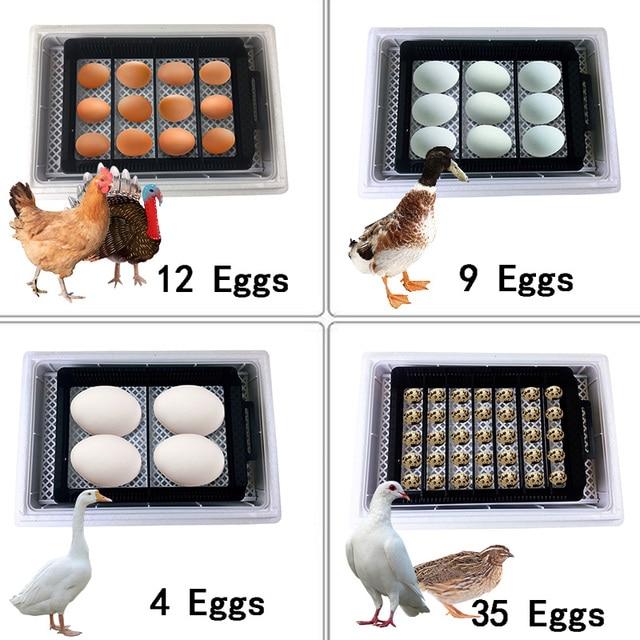 Full Automatic Incubator Brooder Farm Hatchery Machine 12 Egg Hatcher Chicken Automatic Egg Incubator Goose Bird Quail Brooder 2