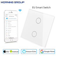 Mini Wifi Smart Wall Switch EU Glass Panel 2 Gang Mobile APP Remote Control Works With