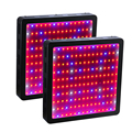 2PCS BOSSLED 1600W Black Double Chips LED Grow Light Full Spectrum for Indoor Plants and Flower Phrase Growing