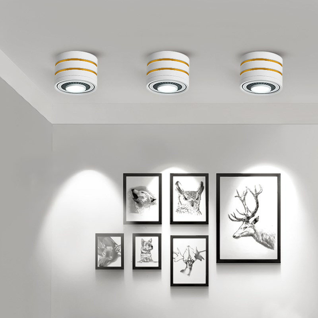 LED Surface mounted Ceiling Light 5w 7w 9w 15w Dimmable Ceiling Lamp 360 degree rotatable COB background spot light For Home
