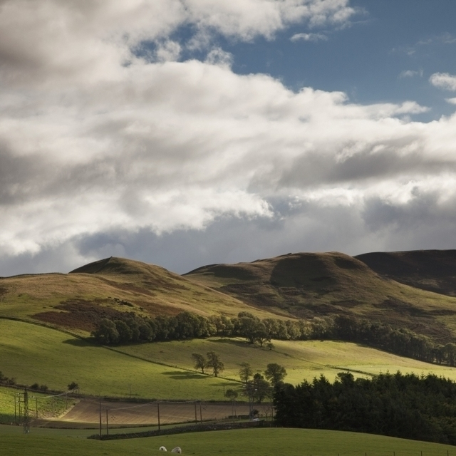 A Landscape With Rolling Hills And Powerlines And Clouds Overhead; Scottish Borders  Scotland Poster Print (19 x 12)