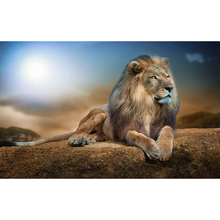 DIY Diamond Embroidery Male lion Full Square/round Diamond Painting Cross Stitch Kit Mosaic Home Decor large diy diamond painting abstract venice city of water embroidery beads cross stitch full square round mosaic decor fs4695