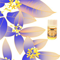 Pure natural Flowers Extraction Cold Press Essential Oil Natural Skin whitening Moisturizing Fragrans Aroma oil 3ml/Pcs Essential Oil