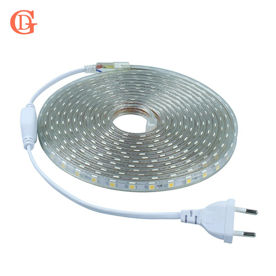 GD 1M 5M 10M 15M 20M LED Strip 220V 5050 SMD LED Strip Light AC220V IP67 Waterproof Outdoor LED Tape For Home Decor Strip Light