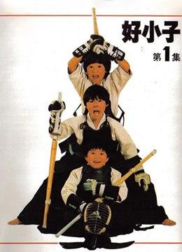 《好小子》1986年台湾喜剧电影在线观看