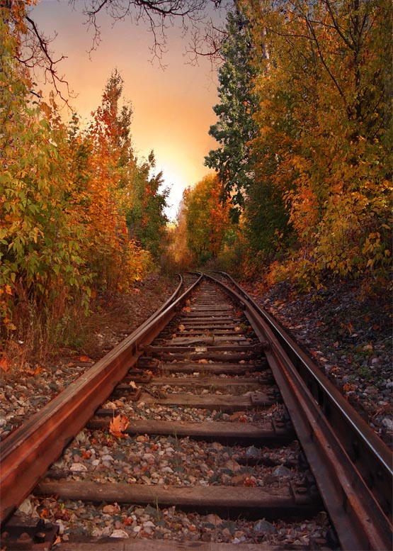 Vinyl Cloth Printing Vintage Train Track Photography Backdrops Autumn Scenic Photography Background For Photo Taking Props