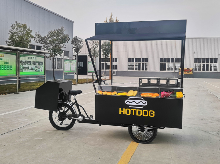 Europe standard CE approved mobile BBQ electric hot dog food bike