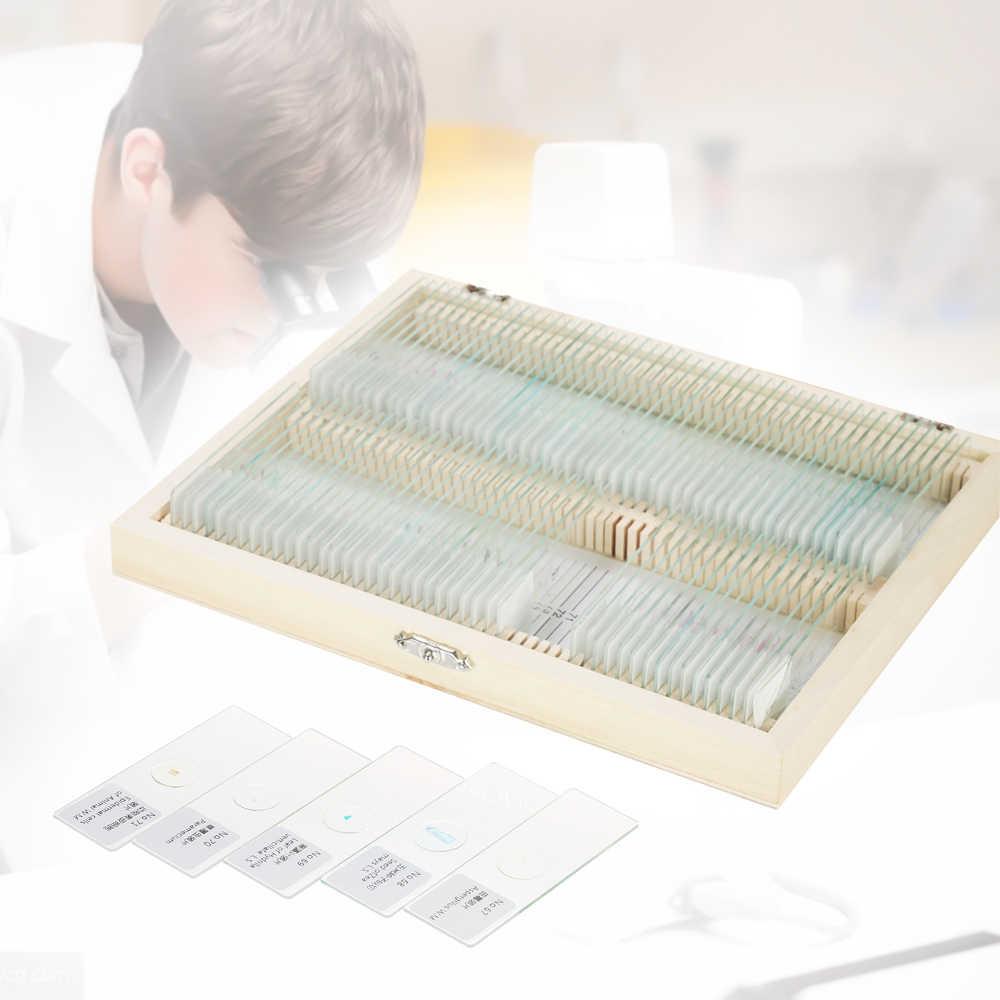 Biología 25/50/100 piezas de microscopio de vidrio preparado escuela deslizante y laboratorio con muestras de enseñanza de etiqueta de inglés chino
