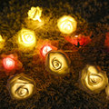 Holiday Lighting 20 LED 2M Rose Flower Fairy String Battery Operated Garden Party Decoration Christmas Lamp Indoor Garland