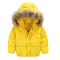 2016 otoño y el invierno últimos niños abajo chaqueta bebé niños chicas Volantes chaqueta con capucha para niños ropa de invierno Factory Outlet!