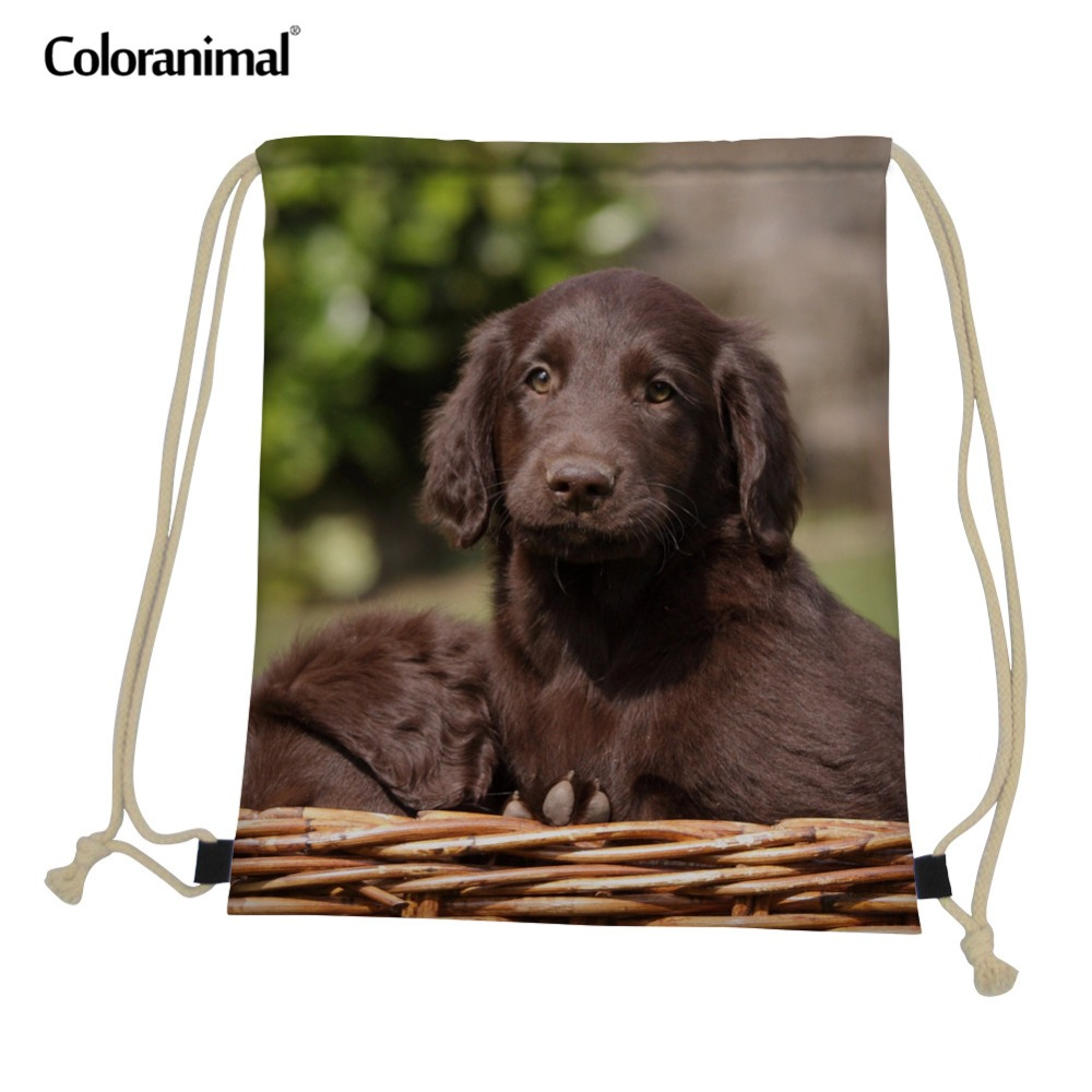 Coloranimal Gym Sack Bag For Men String Drawstring Bag For Men Flat-Coated Retriever Pattern Travel Beach Mini Backpack Satchel