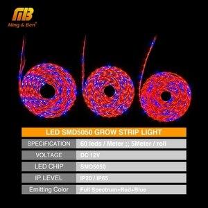 Image 2 - Lampe à spectre complet, S5050 3/LED, 12V DC, 1 bleu, 5M, éclairage à spectre complet, pour serre pour culture hydroponique de plantes, 4/5