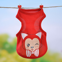Teddy Dog Puppy Clothes