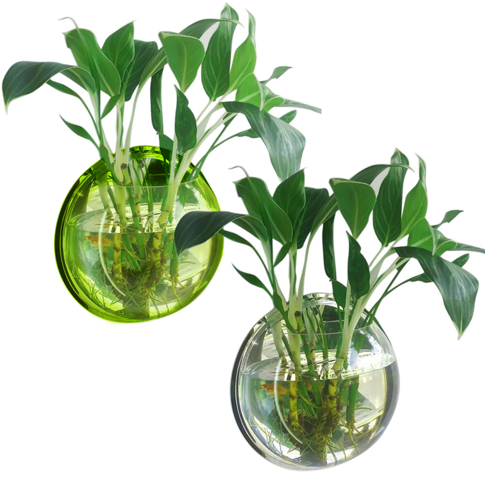 Online buy wholesale round fish bowl from china round fish for Fish bowl with plant on top