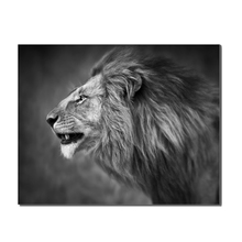 Lion Series Animals Picture Wall Art Painting Room Decor Print Poster Wall Pictures for Sitting Room Canvas Painting цена