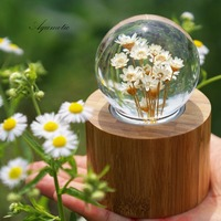 Aqumotic Eternal Flower Daisy Music Box 1pc Pink Clockwork Type Crystal Ball Music Boxes Wood Valentine's Day Present for Girl