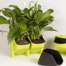 Flowerpot Hanging Vertical-Wall-Planter Self-Watering Garden-Supplies 2-Pocket