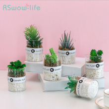 Artificial Plants Photography Accessories Decoration Desktop Green Plant Decoration Artificial Succulents For Desktop Decoration