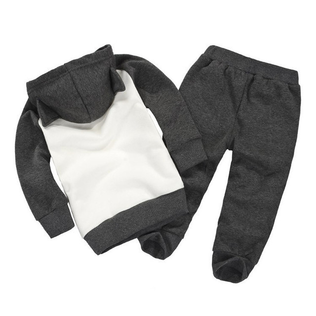 Children Clothing Sets Spring Autumn baby Boys Girls Clothing Sets Fashion Hoodie+pants 2 Pcs suits 2019 1-6 years kids clothes 5