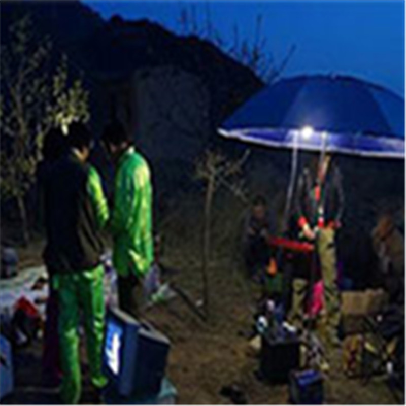 LED Solar Panel Chargeable Tent Lights Waterproof Hanging Camp Garden Outdoor Lamp Energy Saving Decoration Emergency Lighting