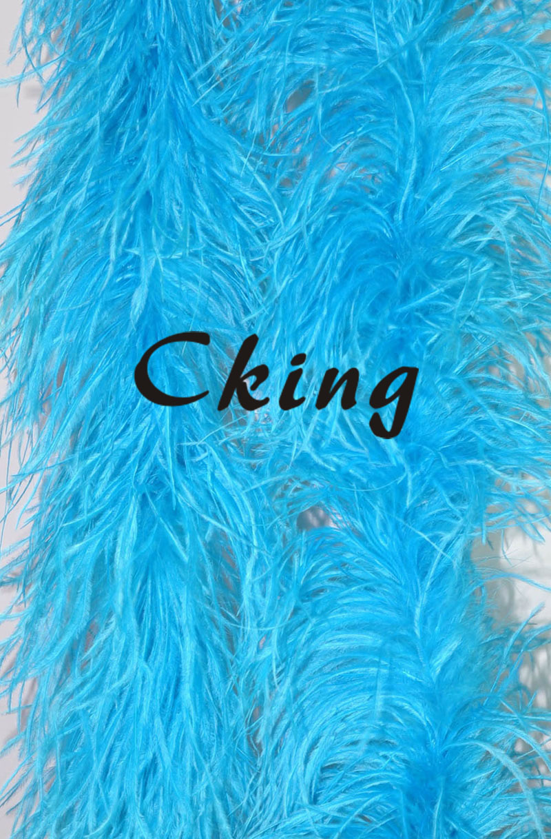 EMS Free Shipping 10pcs Turquoise blue ostrich feather boas 4ply thickness ostrich feather fringe 2 meter long each pc