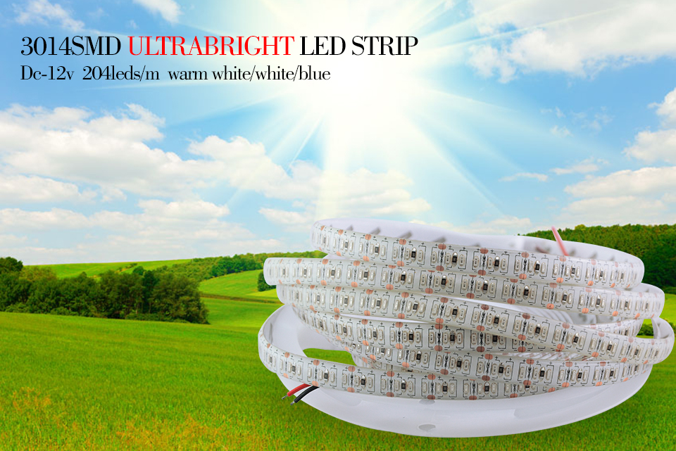 3014 led strip light (1)