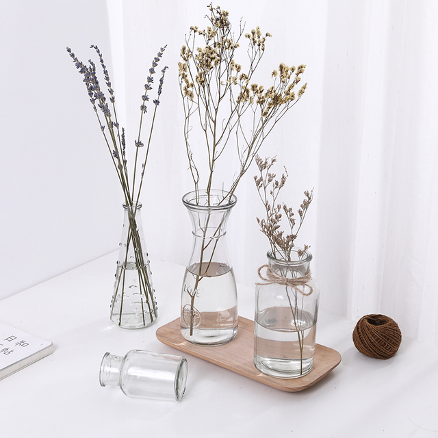 Hydroponic Plants Vase Simple Creative Glass Vase Home Decorative Table Transparent Flower Vase 2