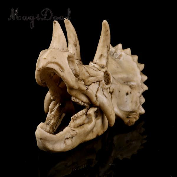 Dinosaur Triceratops Skull Bone Skeleton Aquarium Decorative Craft