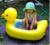 2017 Bebé Piscina Inflable Bebé Piscina Para Niños Amarillo Pequeñas Piscinas Para Bebés Pato Engrosamiento Bañera Inflable Piscina