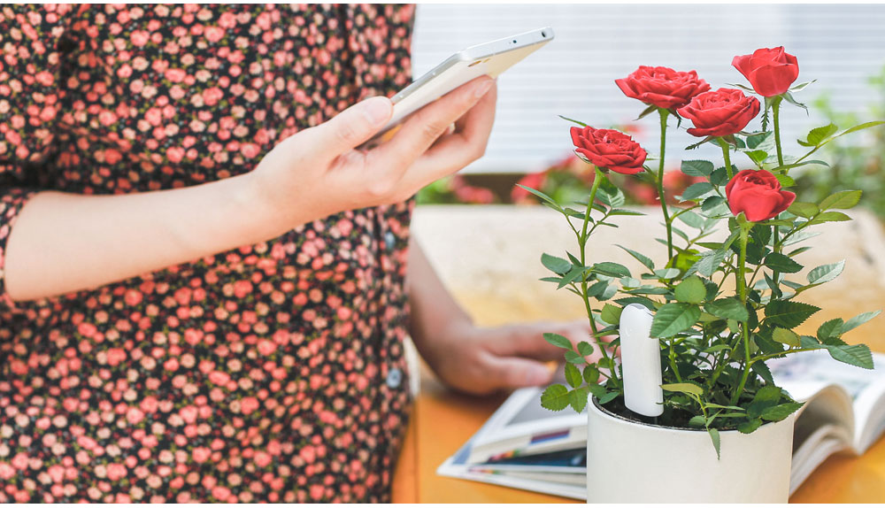 Original Xiaomi Mi Flora Monitor Flowers Grass Care Soil Water Light Smart Tester Digital Sensor For Garden Plant  (9)