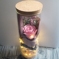 New Year Gifts Glass Cover Fresh Preserved Immortal Colorful Pink Rose Flower Christmas Gifts