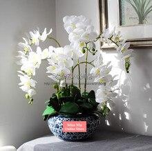 Arrangement Buy Cheap Orchid