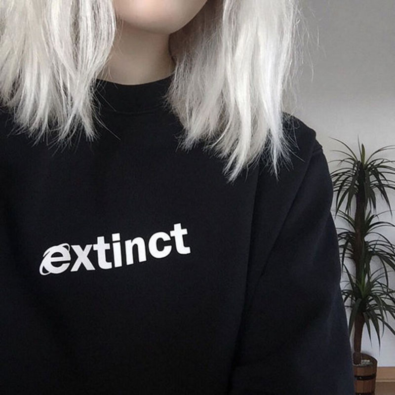 EXTINTO sudadera 90 s Internet Explorer Vaporwave Tumblr inspirado sudaderas pálido Grunge negro estética femenina rejilla