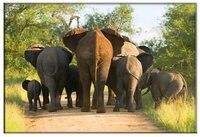 แอฟริกันช้างผ้าใบศิลปะภาพพิมพ์ช้างสัตว์ป่าจิตรกรรมผ้าใบการออกแบบกรอบ1แผงจิตรกรร