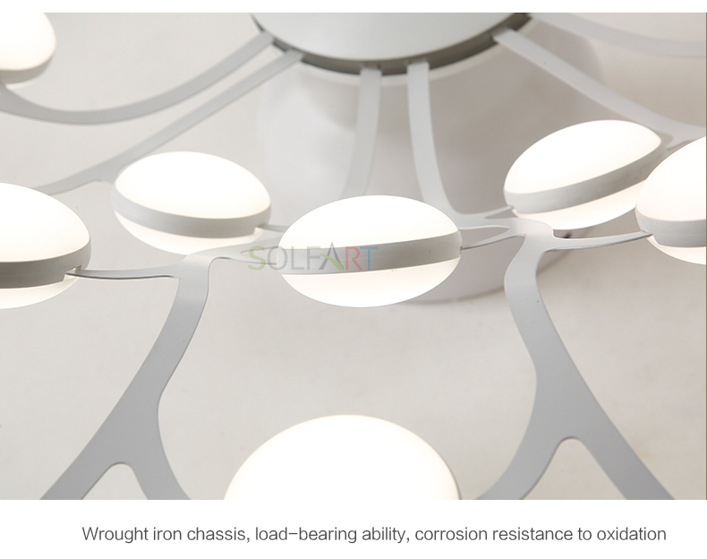 8047-LED Ceiling Light Sconce Luminaria Chandelier Ceiling Avize Light Fixtures Ceiling Lamp_17