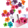 3d nail decoration nail art design 3d natual dry flower deco nails 12 colors DIY Decor tool case 2015 new arrival promotion