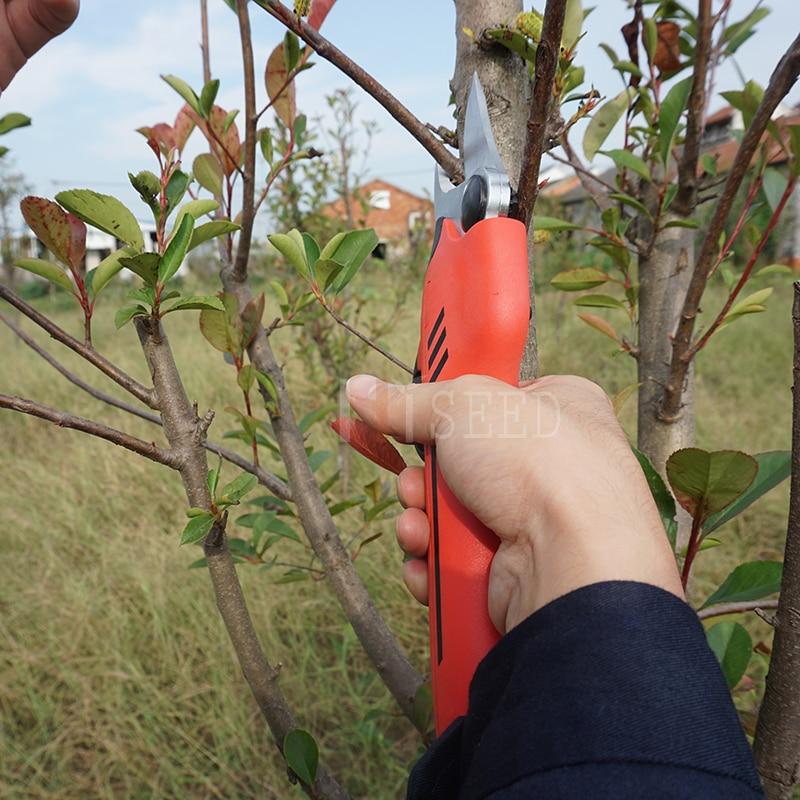 Nożyce ogrodowe sekator kute ostrze (certyfikat CE 6-8 godzin - Narzędzia ogrodnicze - Zdjęcie 2