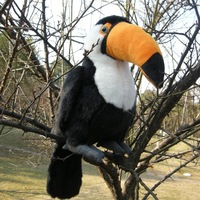 new plush Toucan toy lovely black bird doll gift about 24cm 2632