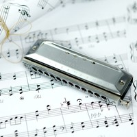Ru 12 Hole 48 Tone Easttop Chromatic Harmonica Copper C Armonica Mouth Ogans Instrumentos De Musica