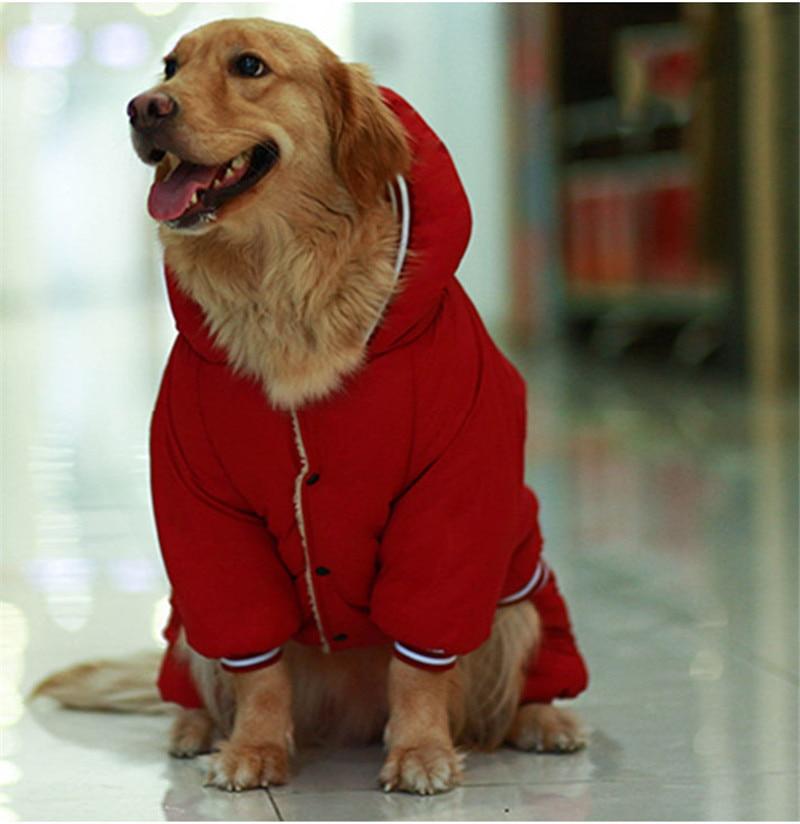 Warm dog clothes (8)