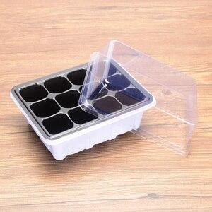 6/12-Slots Cells Nursery Pot P