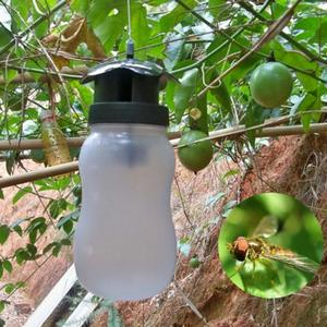 Image 1 - Portable Fruit Fly Trap Killer Insect Trap Fly Catcher White Plastic Outdoor Flies Garden Insect Bottle Drop Shipping
