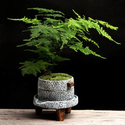 Small stone mill Creative cement style flower pot Green plant pot small bonsai pot home interior retro succulent plant pot