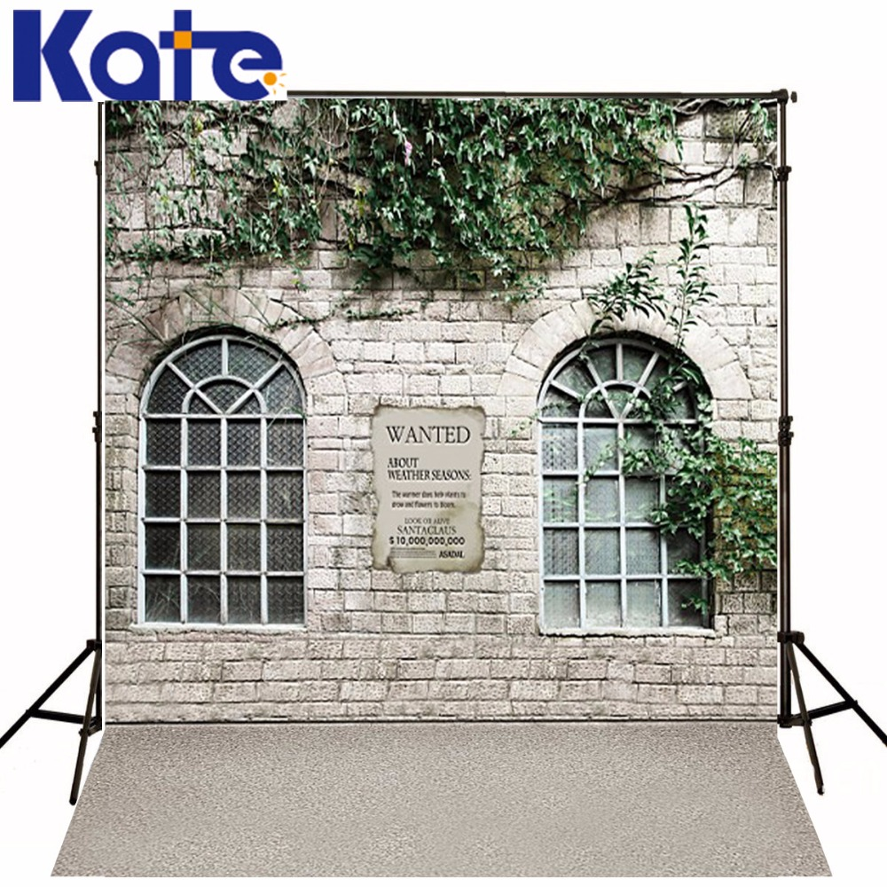 New Arrival Background Fundo Reward Stone House Plants 300Cm*200Cm(About 10Ft*6.5Ft) Width Backgrounds Lk 3854 george varghese diana john and solomon habtemariam medicinal plants for kidney stone a monograph