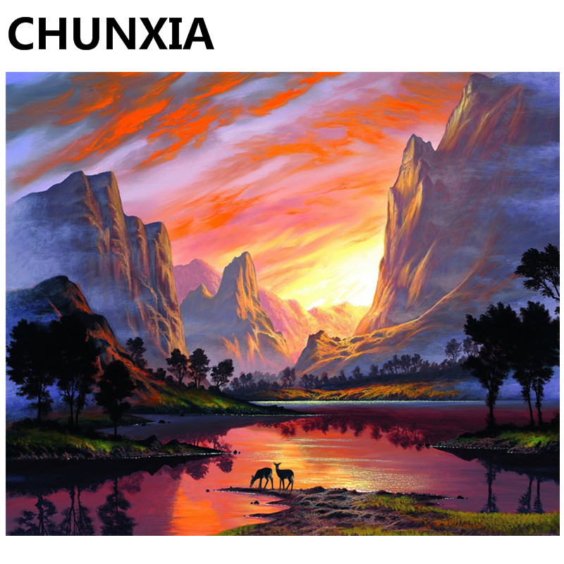 CHUNXIA Painting By Numbers DIY Framed Oil Paint Pictures Wall Art Home Decor Unique Gift 977