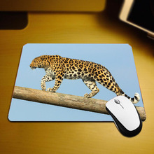 Mairuige 220x180x2MM and 250x200x2MM Small Size Animals Mouse Pad Mice Mat for Improve Mouse Speed Pc Computer Gaming Mice Mat