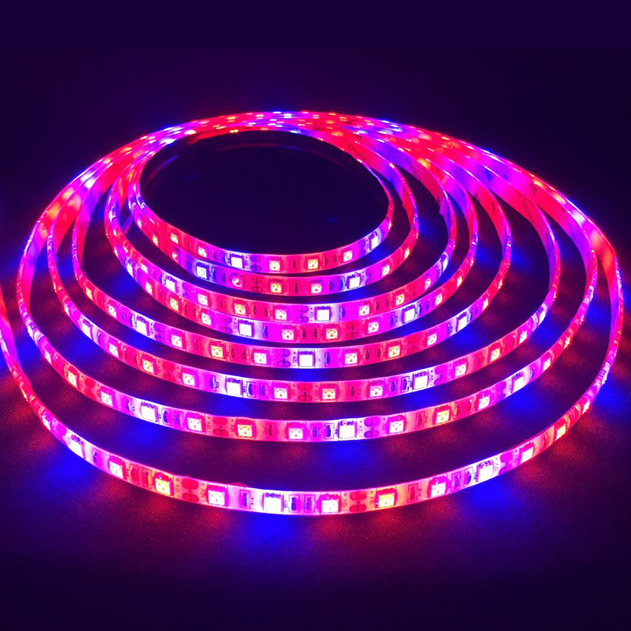1M 2M 3M 4M 5M LED Grow Light DC12V 5050 IP65 Vandtæt Led Plant Vækst Strip Light til Akvarium Drivhus Hydroponic Plant