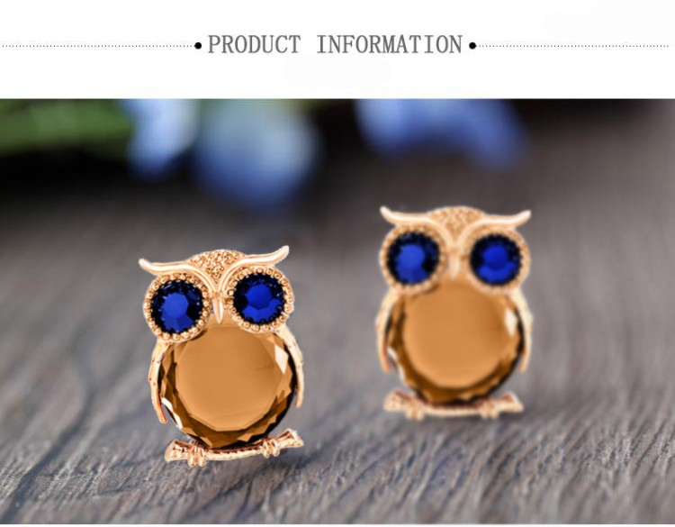 Trendy Colorful Owl Earrings